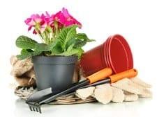 Tuin en Terras en kosten